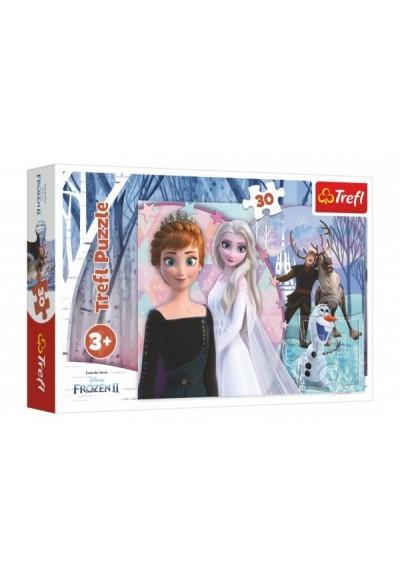 Puzzle Ledové království II/Frozen II 30 dílků 27x20cm v krabičce 21x14x4cm
